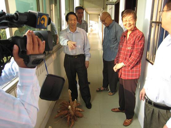 2007.11.17自治區人大副主任徐愛俐到我所考察木薯產業化項目情況