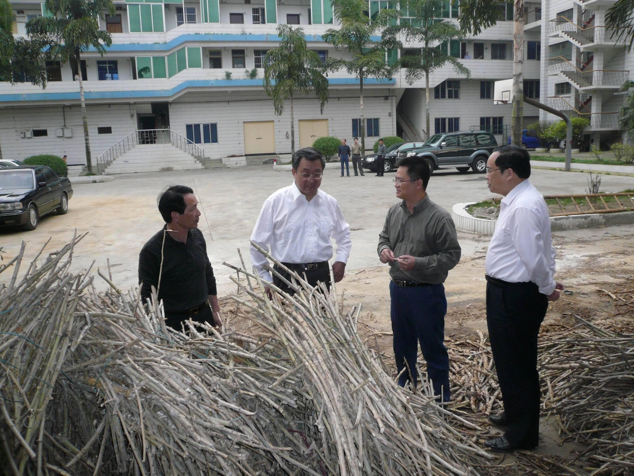 2008.03.29国家粮食局副局长郄建伟到我所了解冻灾后农作物的抢种情况